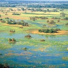 okavango01.jpg